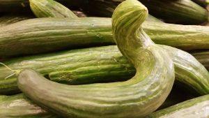 Reseptejä ja treenejä: Miten saada lapset syömään enemmän kasviksia